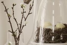 Spring Decor / All things Spring decor related