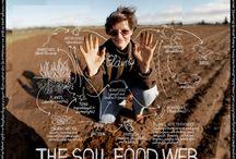 Teach-food chains