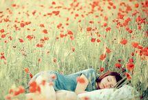 I dream of secret gardens