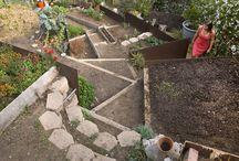 garden / by foundling