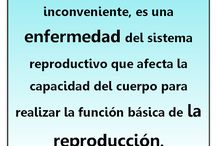 Infographics en Espanol / by ASRM