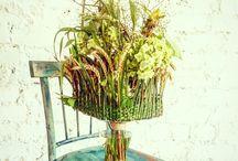Floral design: Bouquets