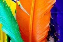 Brasil... meu Brasil brasileiro...