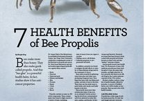 Propolis / ProOcutein is powered by Propolis