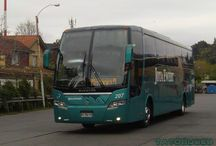 Buses Jota Ewert