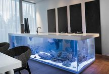 Amazing Aquarium Tanks
