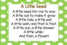 Spring Plants Inquiry