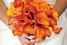 Wedding ideas / by J-Lynn Zienta