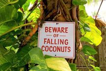 Funny travel signs