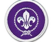 badges scouts / ma collection de d'écussons et leurs histoires