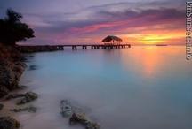 Sunsets / by Cristina Wanda