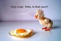 Funny/haha!