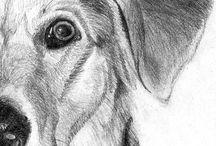 Drawings / Pencils