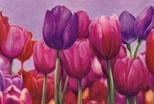 Cuadros / Flores