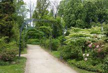 """Сады Алансона / Нормандский городок Алансон, """"Парк для прогулок"""" (Alençon, Parc des Promenades). Замечательное место! Бесконечное разнообразие цветов и растений. Хочется гулят часами в обнимку с любимым мужем :)  https://fr.wikipedia.org/wiki/Parc_des_Promenades"""
