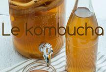 kefir kombucha
