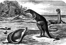 Dinosaurs Prehistoric Animals and Beasts / Dinosaurs Prehistoric Animals and Beasts, fossils and bones Art, Collectibles and Gifts