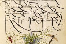 Arte della calligrafia