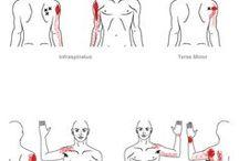 Trigger noktası-masaj
