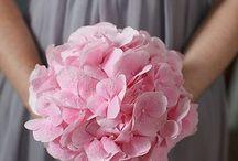Wedding / by Courtney Esper