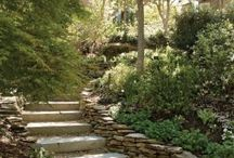 jardines tratamiento