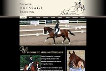 Our Web Design Portfolio / We have a huge passion for designing websites and have been helping small businesses get creative and customer-grabbing Internet presences since 1998. Please visit the websites of some of our customers here.  And visit our sites at www.equinewebdesign.ca & www.docutype.net