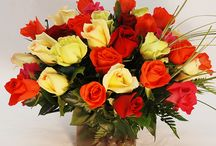 Everything's coming up Roses! / Beautiful roses are available in many colors and varieties of arrangements and pricing appropriate for any occasion. http://www.norfolkflorist.com/flowers/roses-virginia-beach-va/