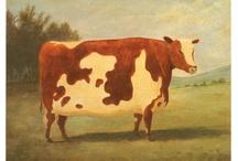 COW ART / cow art