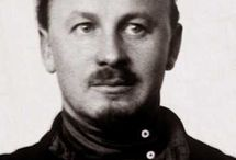 Суриков ос
