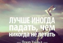 цитаты в жизнь