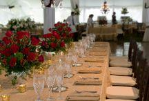 Wedding Reception / Wedding Reception