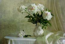 {a whiter shade of pale} / by Deborah Ondrejko