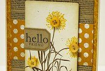 Cards / by Cyndy Clark