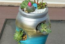 Plants/terrariums
