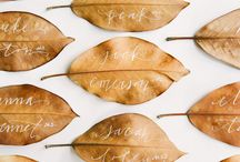 Fall Wedding Details / by Snippet & Ink