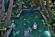 les jardins d'eden by sabine du www.manoir-en-agenais.com / jardins esthétisme parc et piscine décoration aménagement