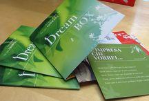 Prodotto: Dream Box / Concept, progetto grafico, copy e realizzazione di cartella fustellata e schede per Sviluppo Umano Firenze
