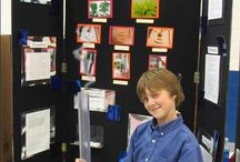 School Ideas- Science Fair