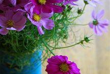 eco-chic vases