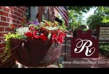 The Gardens of Historic Roscoe Village / The flower beds of Roscoe Village were created in the early 1970's out of Frances Montgomery's love for gardening.  Today the beauty of Roscoe Village is showcased with pocket gardens throughout the village.  Enjoy a trip to Historic Roscoe Village and stroll through the beautiful gardens planted throughout this restored 1830s canal town.