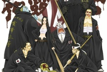 One Piece | shichibukai