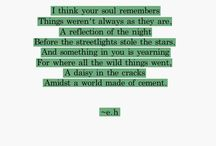 Poetry & Quotes