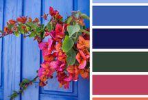 Color Schemes / Esquemas de cores para decoração
