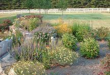 Landscape Designs / Gardens