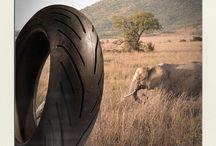 An Amazing Ride / Nos pneus sont partis en vacances. Et vous quel est votre route préférée pour rouler?  Our tires went on holiday. And you, what's your favorite road to ride?