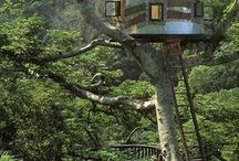 treehouses around the world