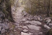 Northern Ontario Trails