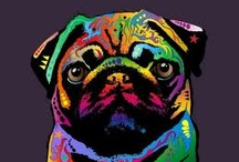 All things PUG / I love me some PUG.