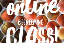 Beekeeping / I recently bought a beekeeping kit and I look forward to sharing the adventure with you!