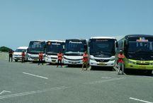 Bus Pariwisata / Sewa Bus Pariwisata Jogja Harga Murah